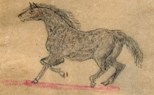 hawkins-horse