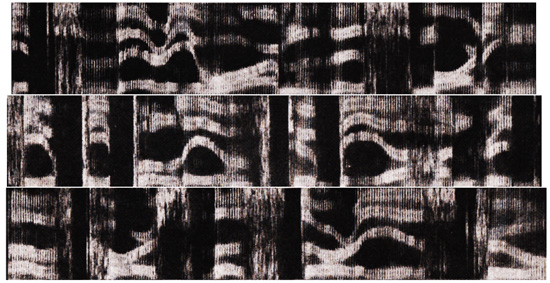 spectrograms-p268-inverted-contrast