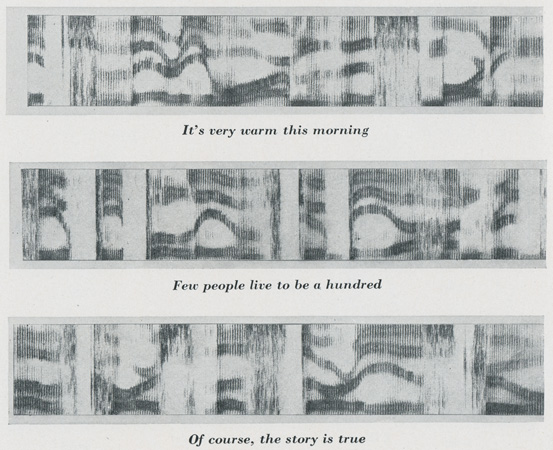 spectrograms-p268