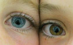 eyeseyes
