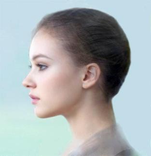profile-modern-2e