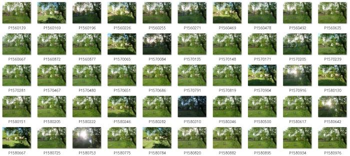 back-porch-forward2-source-image-folder
