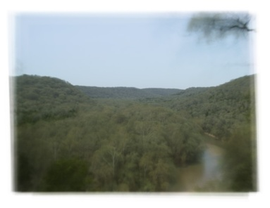 mammoth-cave-all-images-averaged-mean