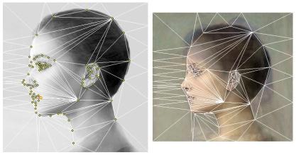 profile-template-triangulation2